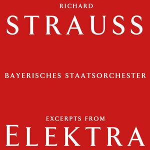Bayerisches Staatsorchester 歌手頭像