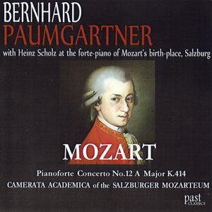 Bernhard Paumgartner 歌手頭像