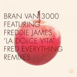 Bran Van 3000 歌手頭像