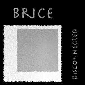 Brice 歌手頭像