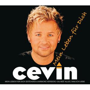 Cevin