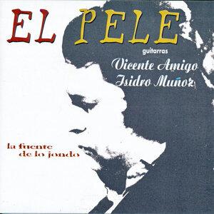 El Pele 歌手頭像