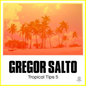 Gregor Salto 歌手頭像