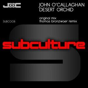 John O'Callaghan 歌手頭像