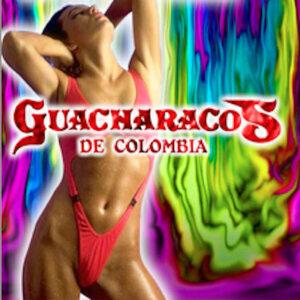 Los Guacharacos de Colombia 歌手頭像