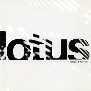 Lotus 歌手頭像