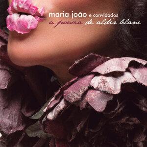 Maria Joao 歌手頭像
