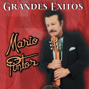 Mario Pintor 歌手頭像