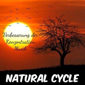 Entspannung Natur Phantasiereise & Positives Denken & Yoga Musik Akademie Artist photo