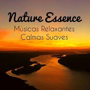 Fundo Musical Academy New Age & Sons da Natureza Relax & Meditação Maestro Artist photo
