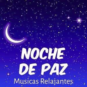 Musica Relajante & Musica Para Estudiar Academy & Radio Musica Clasica Artist photo