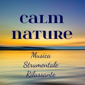 Relaxing Music & Wellness & Peaceful Music Artist photo