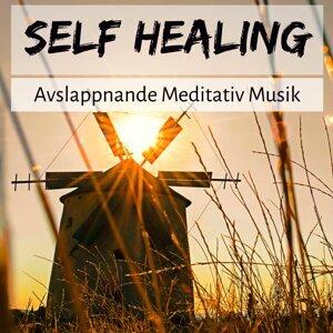 Avslappnande Musik & Meditation och Avslappning & Naturljud Artist photo