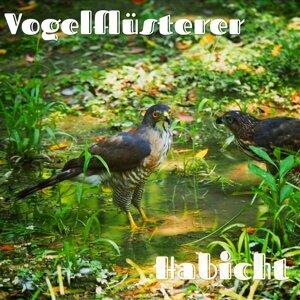 Vogelflüsterer Artist photo