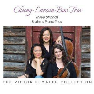 Chung, Larson, Bae Trio Artist photo