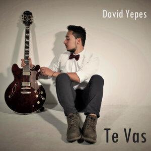 David Yepes Artist photo