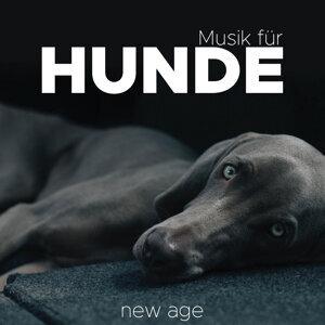 Entspannungsmusik Akaedmie & Klassische Musik Radio & Spa Relaxation & Spa Artist photo