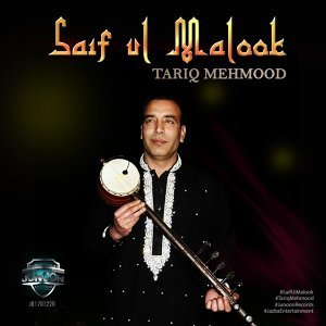 Tariq Mehmood Artist photo