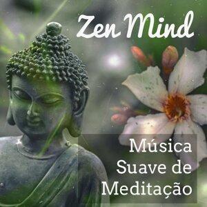 Bossa Nova do Brazil & Meditação Maestro & Canção de Ninar Relax Artist photo