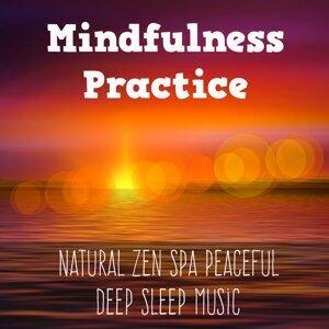 Natural Sounds & Study Music Orchestra & Meditation Zen Master Artist photo