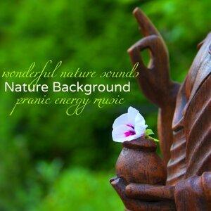 Art of Peace & Zen Nadir Artist photo