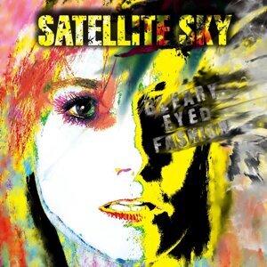 Satellite Sky Artist photo