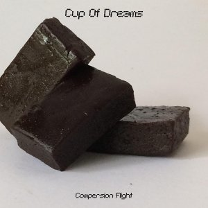 Compersion Flight Artist photo
