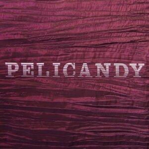 Pelicandy Artist photo