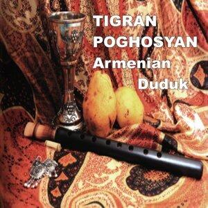 Tigran Poghosyan Artist photo