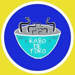 Rabo de Toro Artist photo
