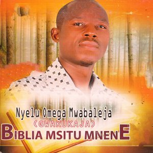 Nyelu Omega Mwabaleja Artist photo