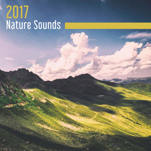 Nature Sounds Relaxation: Music for Sleep, Meditation, Massage Therapy, Spa, Sounds of Nature White Noise for Mindfulness, Meditation and Relaxation, Meditation & Stress Relief Therapy Artist photo