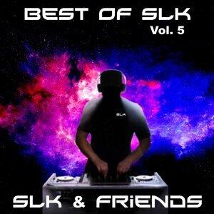 SLK & Friends Artist photo