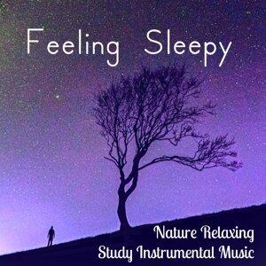 Nature Sounds & Relaxation Study Music & Yoga Workout Music Artist photo