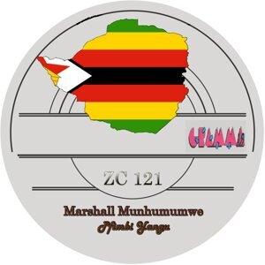 Marshall Munhumumwe Artist photo