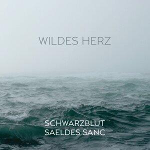 Schwarzblut, Saeldes Sanc Artist photo