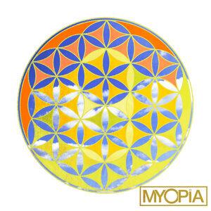 Myopia Artist photo