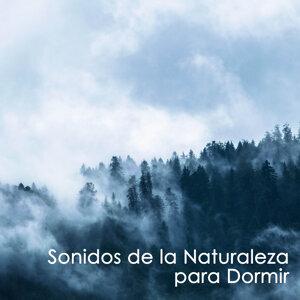 Musica Relajante Voyage & Radio Musica Clasica & Native American Indian Meditation Artist photo