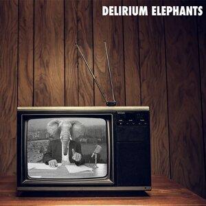 Delirium Elephants Artist photo
