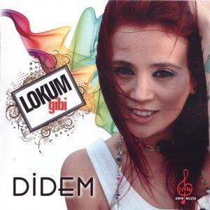 Didem Artist photo