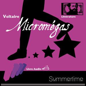 Voltaire 歌手頭像