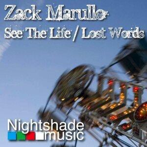 Zack Marullo Artist photo
