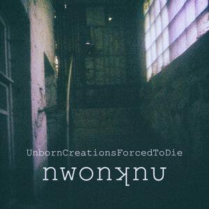 Nwonknυ Artist photo