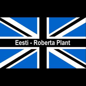 Roberta Plant Artist photo