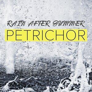 Rain After Summer Artist photo