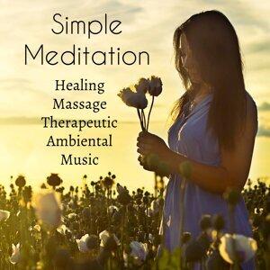 Massage Music & Binaural Beats & Asian Traditional Music Artist photo