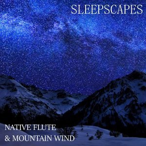 Sleepscapes Artist photo