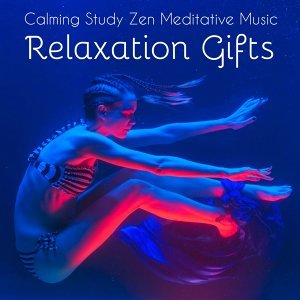 Calm Music for Studying & Relaxing Songs & Relaxation and Meditation Artist photo