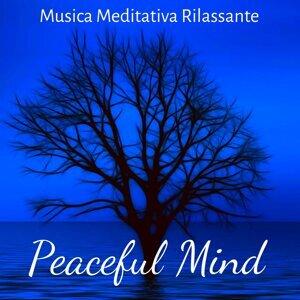 Effetti Sonori Specialisti & Pura Meditazione Zen & 101 Musica Piano Artisti Artist photo