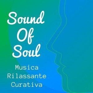 Insonnia Maestro & Scuola di Concentrazione & Musica Relax Artist photo